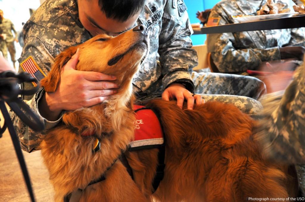 Hero Dog Teddy with his veteran. Photo courtesy of USO