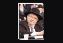 Rabbi Dovid Feinstein